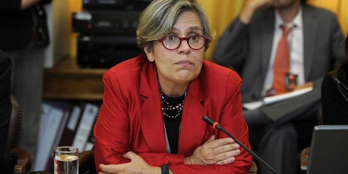 Diputado Coloma citará a Comisión de DD.HH. a Lorena Fríes