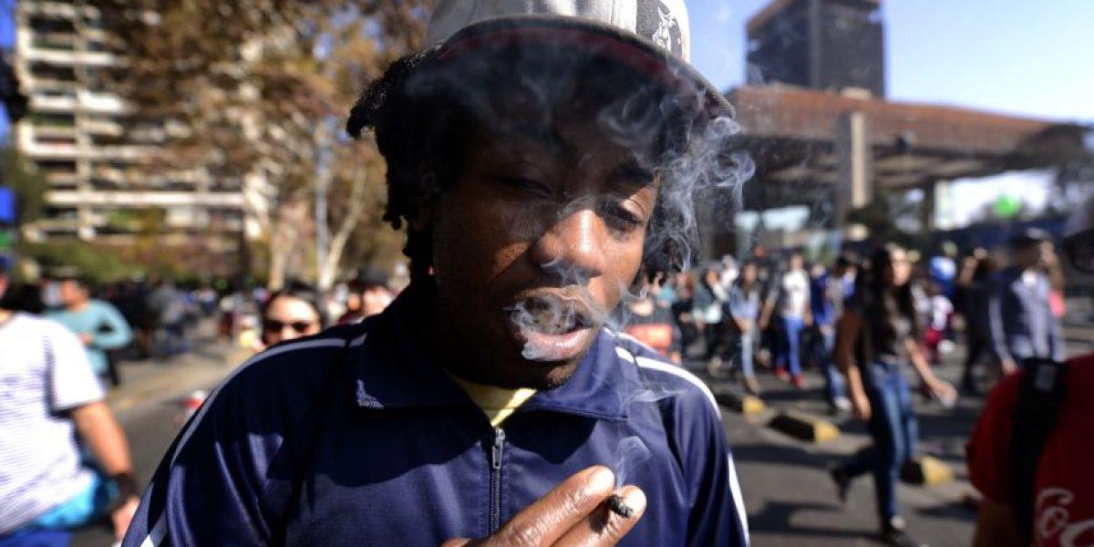 Explosivo aumento de consumo de marihuana entre jóvenes de 12 a 18 años
