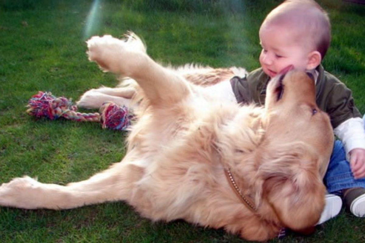 El mejor momento del día para estos dos amigos Foto:Pinterest. Imagen Por: