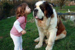 ¡Beso, beso! Foto:Pinterest. Imagen Por: