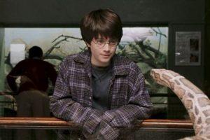 Después de que el Horrocrux en Harry fuese destruido, este jamás pudo volver a hablar Parsel. Foto:vía Warner Bros. Imagen Por: