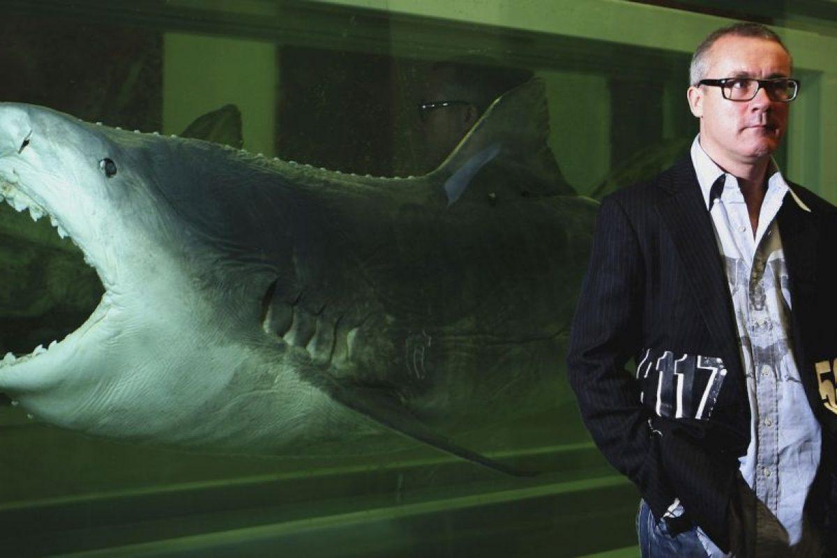 Esto significa que los bañistas tienen más de ahogarse que de ser mordidos por uno de estos animales. Foto:Getty Images. Imagen Por: