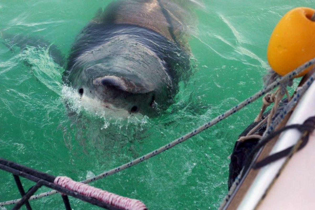 5. Kosi Bay, también en Sudáfrica. Foto:Getty Images. Imagen Por: