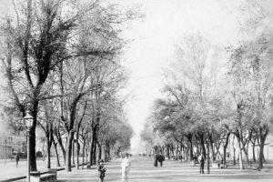 Bandejón central de la Alameda de Las Delicias de Santiago en 1896. Foto:Fotos Históricas de Chile. Imagen Por: