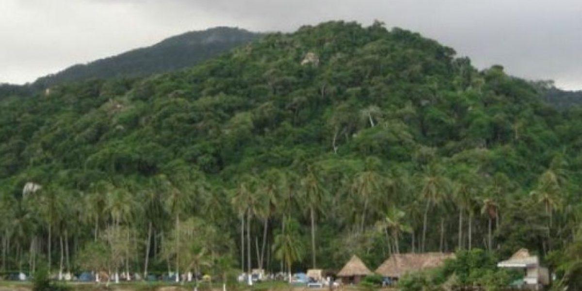 Una niña de 7 años sobrevive 17 días perdida en la selva en Colombia
