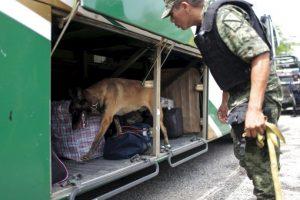 Como parte de la transparencia en las investigaciones, anoche se reveló los videos de la fuga Foto:AFP. Imagen Por:
