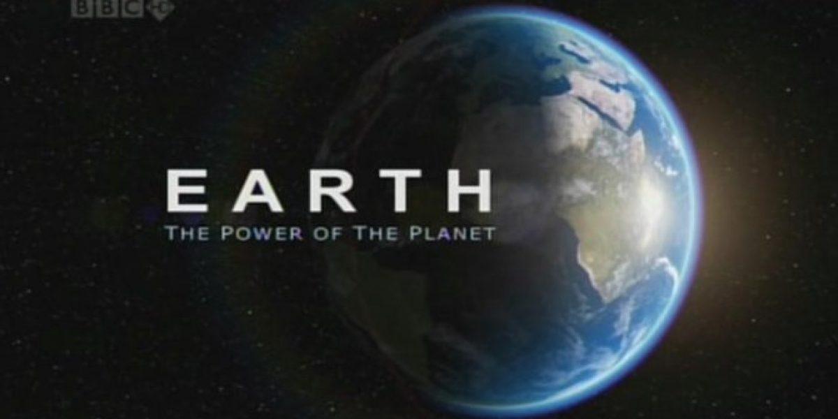 Los aplaudidos productos de BBC Earth llegarán a la pantalla abierta chilena