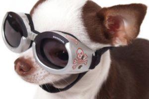 O estos lentes… Foto:Pinterest. Imagen Por: