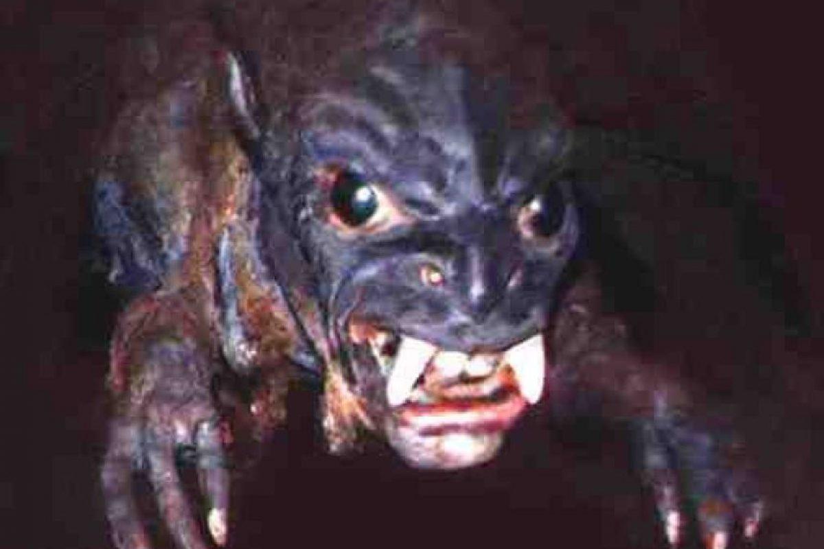 ¿Será este el mítico Chupacabras? Foto:Reproducción. Imagen Por: