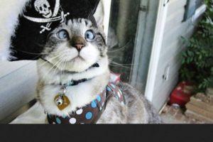"""Jack Sparrow de """"Piratas del Caribe"""" Foto:Pinterest. Imagen Por:"""
