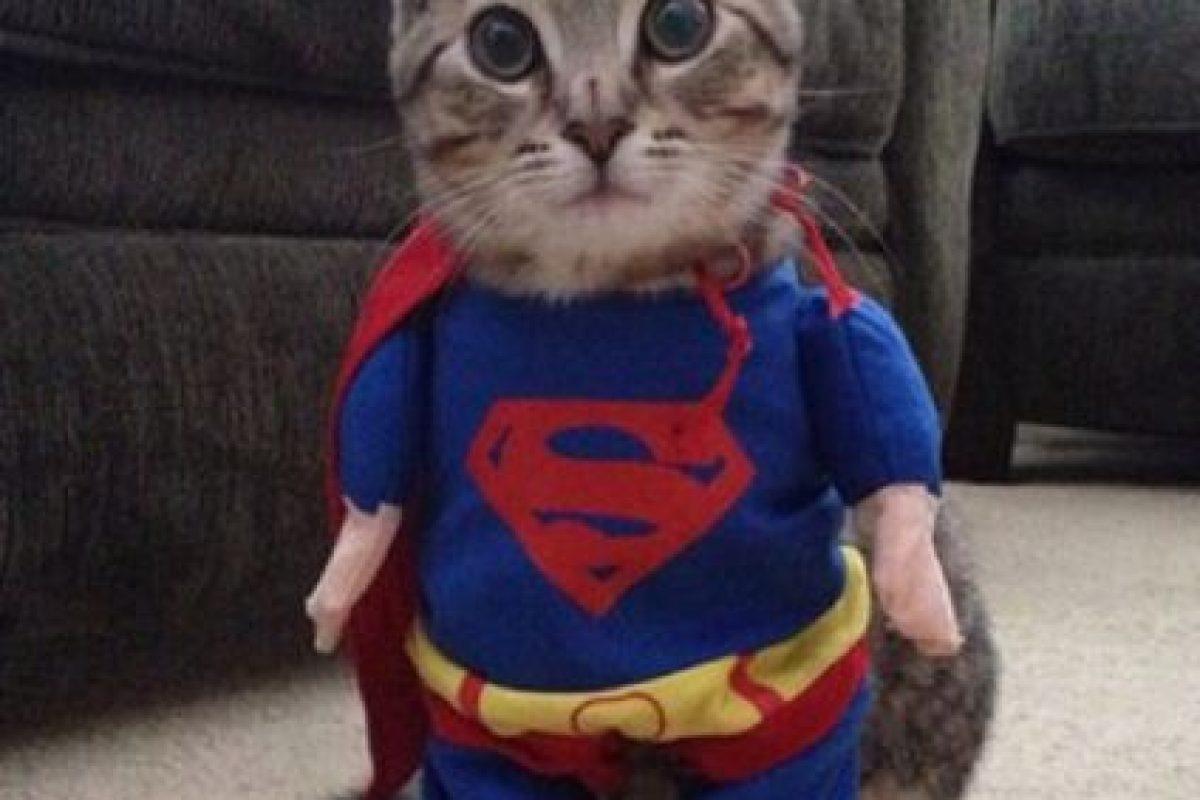 ¡Superman! Foto:Imgur. Imagen Por:
