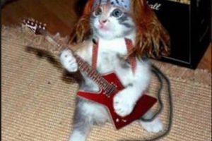 ¿Axl Rose con guitarra? Foto:Pinterest. Imagen Por: