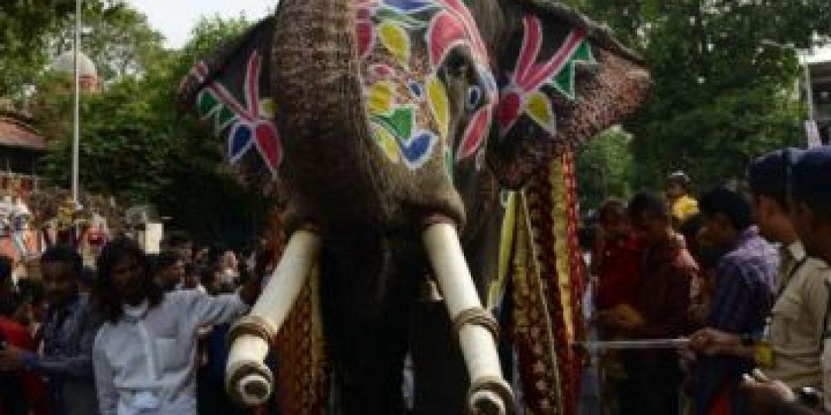 Galería: procesión Rath Yatra en la India