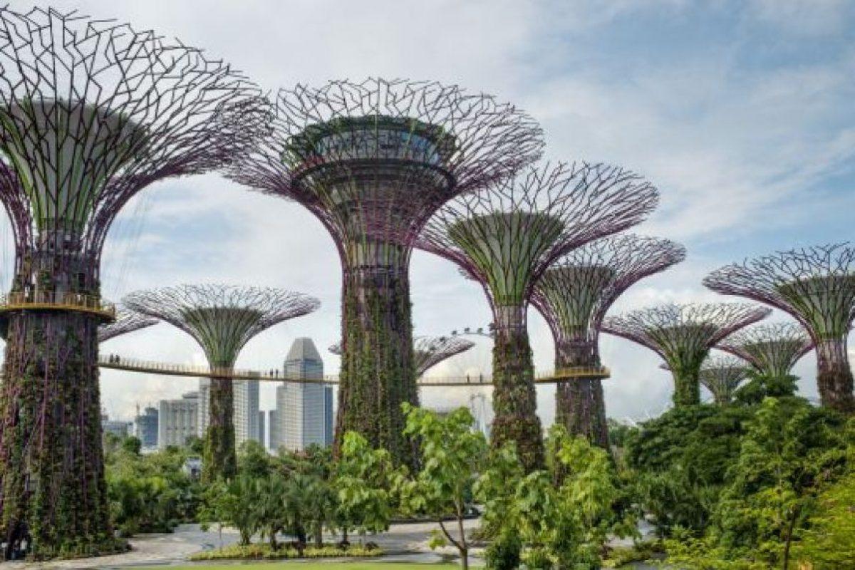 9. Los Súper Árboles, Gardens by the Bay, Singapur Foto:GETTY IMAGES. Imagen Por: