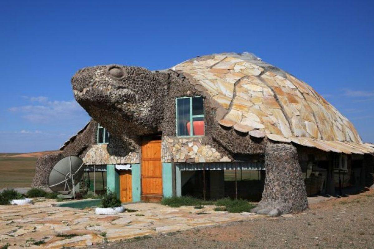 1. Café de la tortuga, desierto de Gobi, Mongolia. Foto:GETTY IMAGES. Imagen Por: