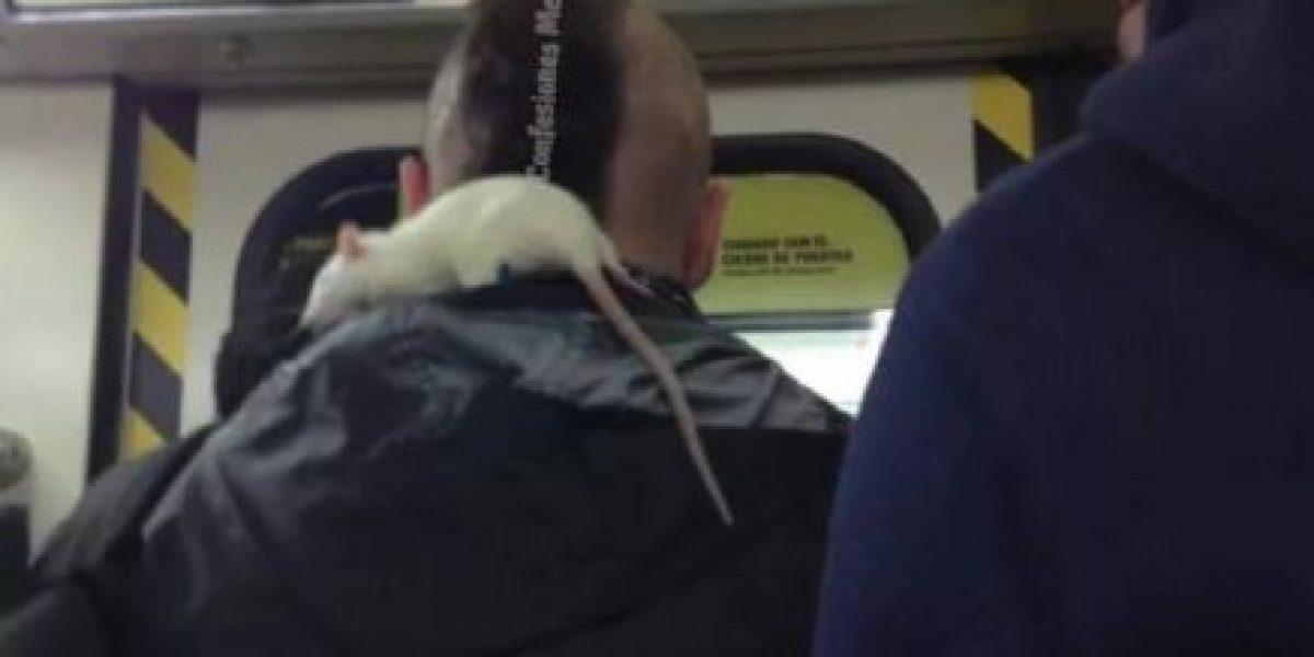 Más cosas raras que ven a diario los pasajeros del Metro