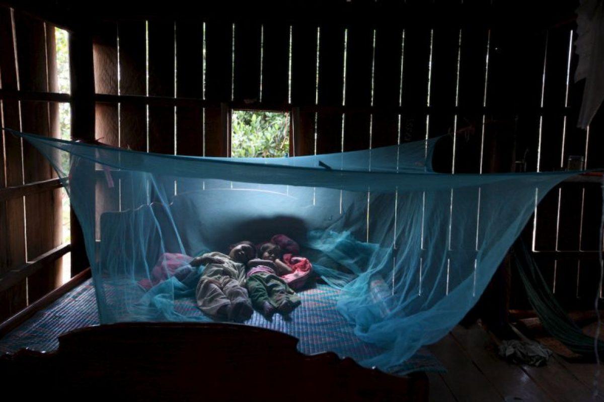 7. Los Centros para el Control y la Prevención de Enfermedades de los Estados Unidos (CDC, por sus siglas en inglés) indican que cada año mueren más de un millón de personas en el mundo a causa de la malaria. Foto:Getty Images. Imagen Por: