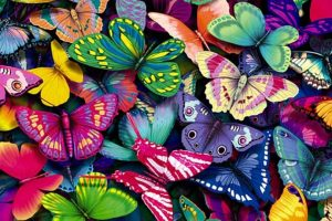 Lepidopterofobia: Aversión a las mariposas Foto:Reproducción. Imagen Por: