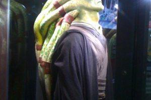 Sino dotar a los seres sensibles a ella de las herramientas interiores suficientes para no sucumbir a la sensual influencia del Lado Oscuro Foto:Wikia/Star Wars. Imagen Por: