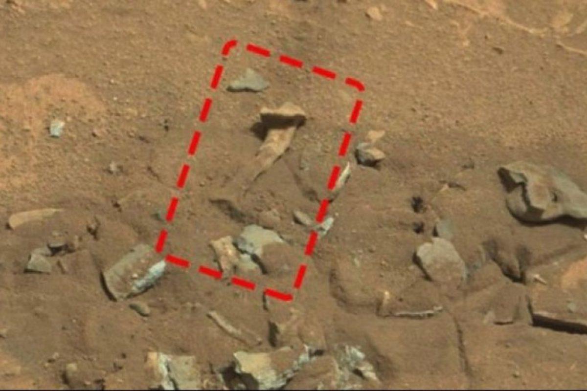 6. Un fémur Foto:NASA. Imagen Por: