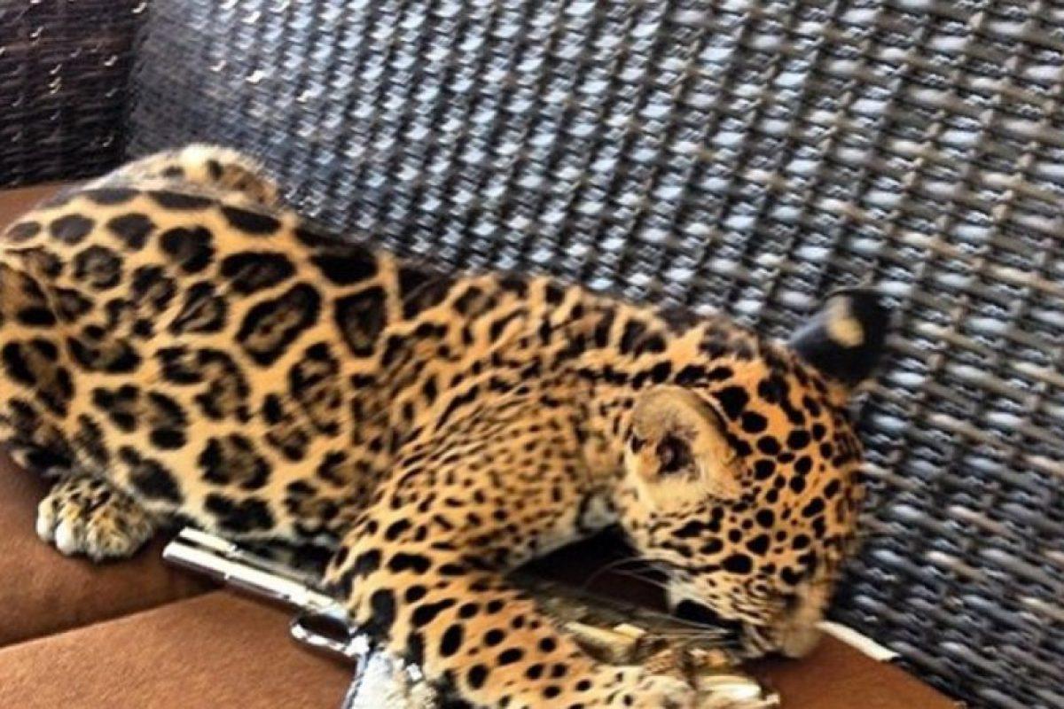 Y a diferencia de sus pares gringos, muestran armas y animales exóticos. Foto:Instagram/RKOMC. Imagen Por: