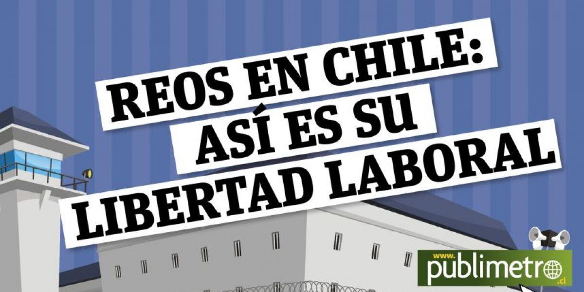 Infografía: Reos en Chile, así es su libertad laboral