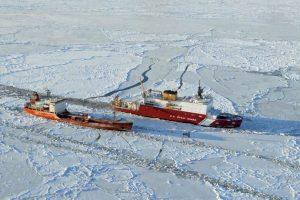 Ambos grupos también coinciden en que fue el estrello de Bering el que les permitió cruzar de continente. Foto:Getty Images. Imagen Por: