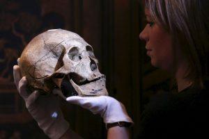 Dos grupos de científicos coincidieron que fueron de origen siberiano. Foto:Getty Images. Imagen Por: