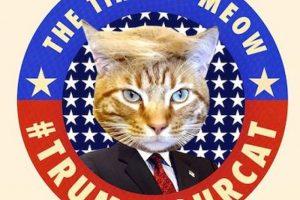 Y con una campaña de ponerle el copete de Trump a las mascotas Foto:Instagram.com/. Imagen Por: