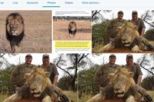 Lo mató el odontólogo Walter Palmer, en el parque nacional Hwange, en ese país. Él y un grupo de cazadores, que trataron de destruirle el collar que tenía un sistema GPS para ubicarle. Foto:vía Twitter. Imagen Por: