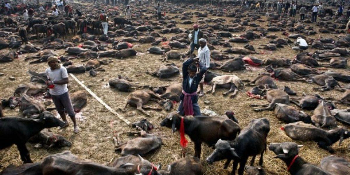 Al menos 29 muertos en aludes de tierra que sepultaron dos aldeas en Nepal
