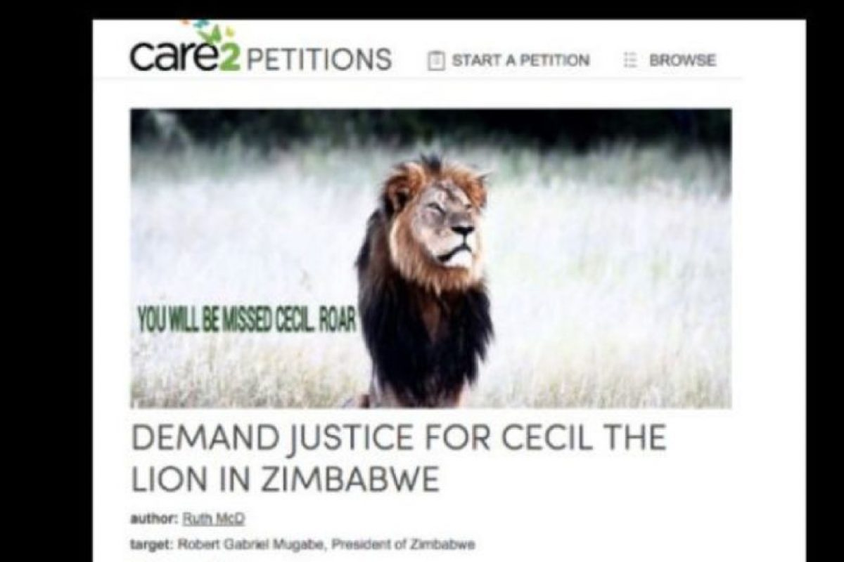 Hay peticiones por justicia para Cecil. Foto:vía Care2 Petitions. Imagen Por: