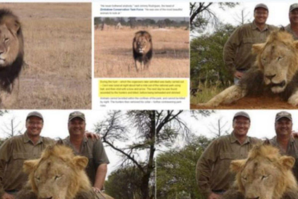 ¿Se acuerdan de Walter Palmer, el que mató al león Cecil? Foto:vía Twitter. Imagen Por: