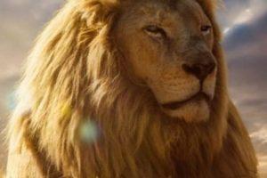 El joven especialista en el campo de biociencias moleculares dio a conocer que Cecil no era querido en su aldea ni en las cercanas, ya que las familias se veían amenazadas constantemente tanto por leones como por otros animales salvajes. Foto:Vía Instagram/#Cecil. Imagen Por: