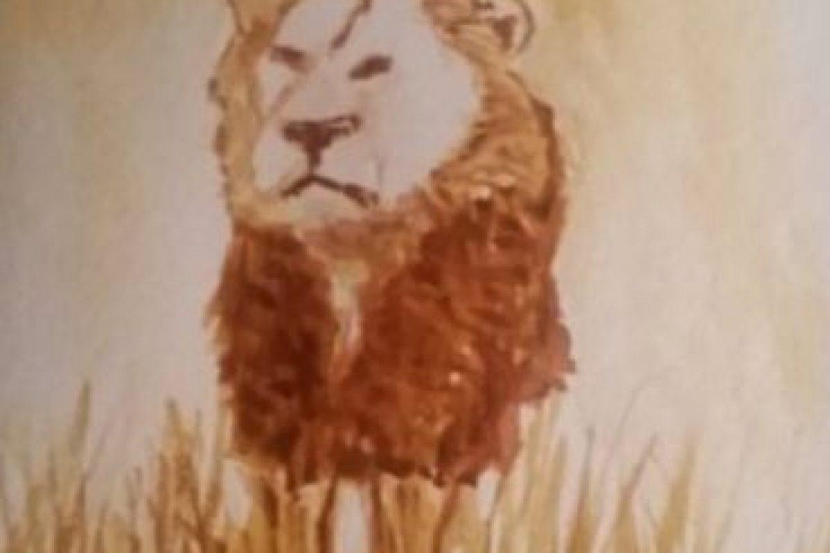 El estudiante también quiso aclarar que la tendencia de hacer de los animales algo romántico y darles nombres les parece a la gente de Zimbabue un circo absurdo. 800 leones se han matado de forma legal en Zimbabue en la última década. Foto:Vía Instagram/#Cecil. Imagen Por: