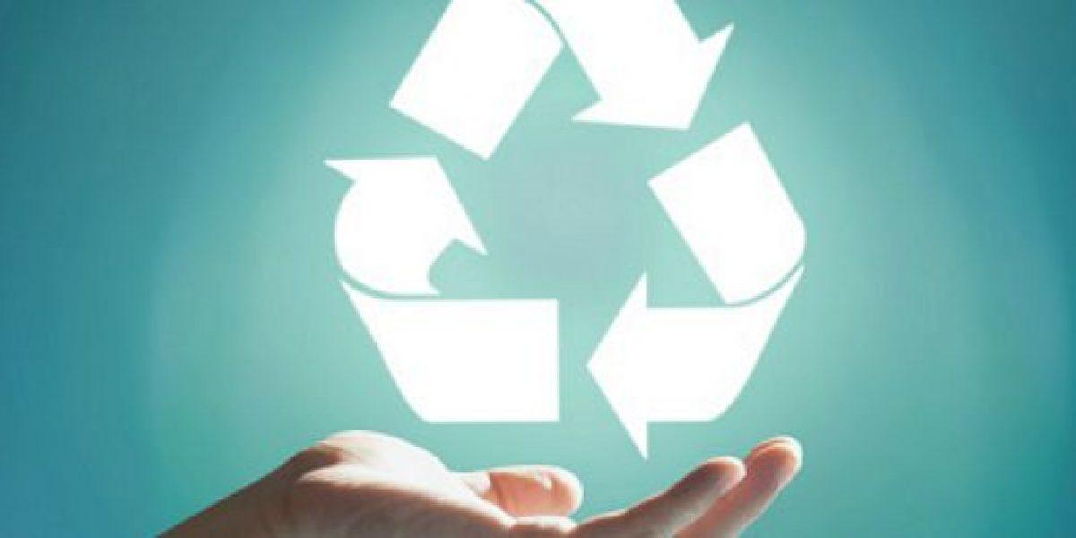 Sernac denuncia a empresas por inducir a engaño en cualidades ecológicas