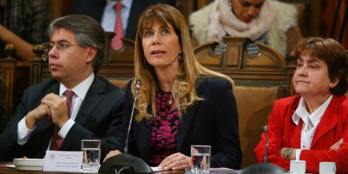 Ministra Rincón: