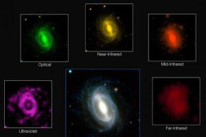 """Simon Driver, explicó que toda la energía del universo fue creada en el """"Big Bang"""". Foto:Vía icrar.org. Imagen Por:"""