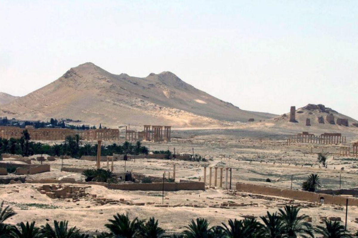 """6. Palmira es conocida como la """"novia del desierto"""". Foto:AFP. Imagen Por:"""