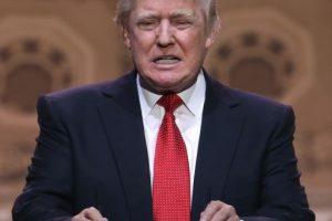 Trump generó polémica al arrancar su campaña presidencial diciendo que obligará a México a pagar un muro fronterizo más grande, por culpa de los migrantes que cruzan a Estados Unidos. Foto:Getty Images. Imagen Por: