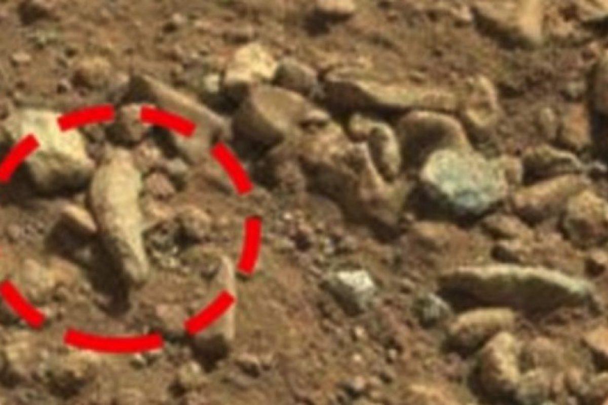 Un dedo fosilizado Foto:NASA. Imagen Por: