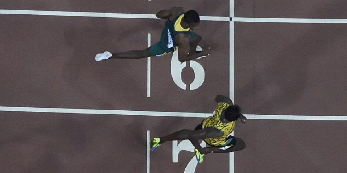 Hijos del viento: Bolt y Gatlin clasifican