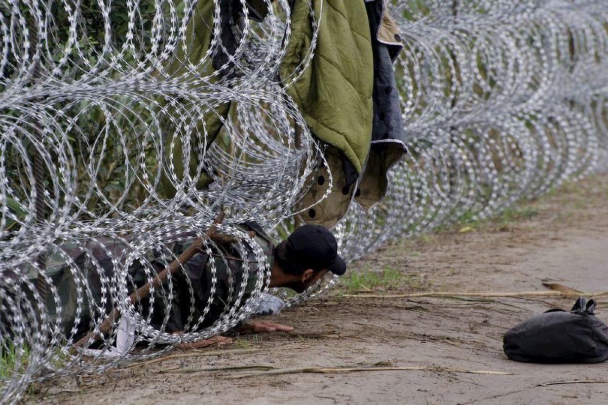 Migrantes en frontera de Hungría y Serbia. Foto:AFP. Imagen Por: