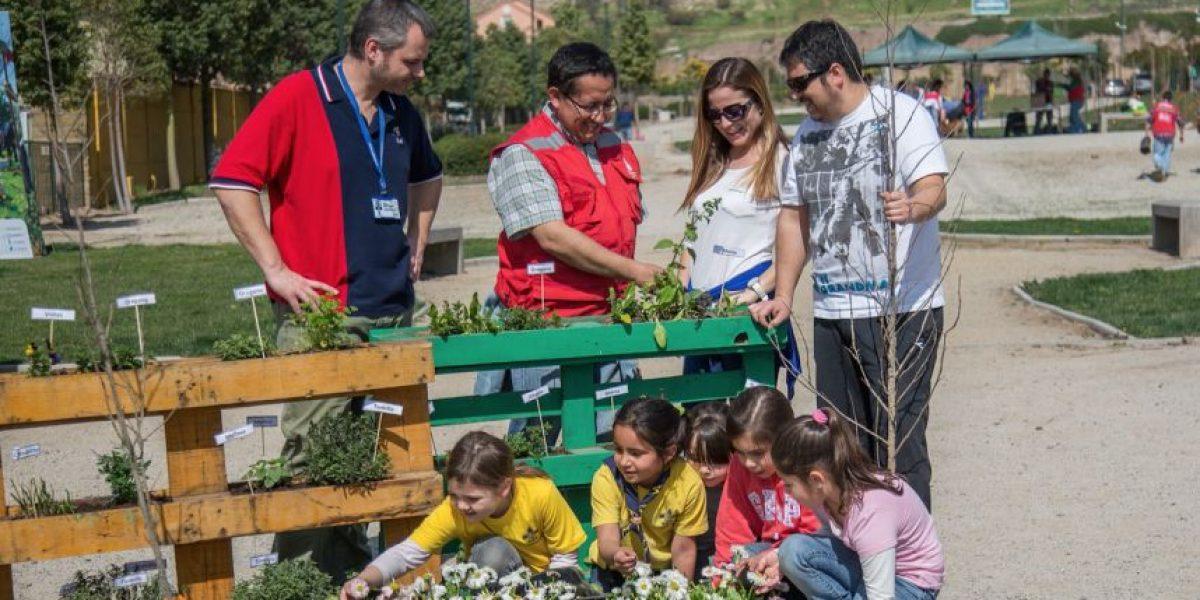 Quilicura Planta Más de 350 árboles para recuperar áreas verdes