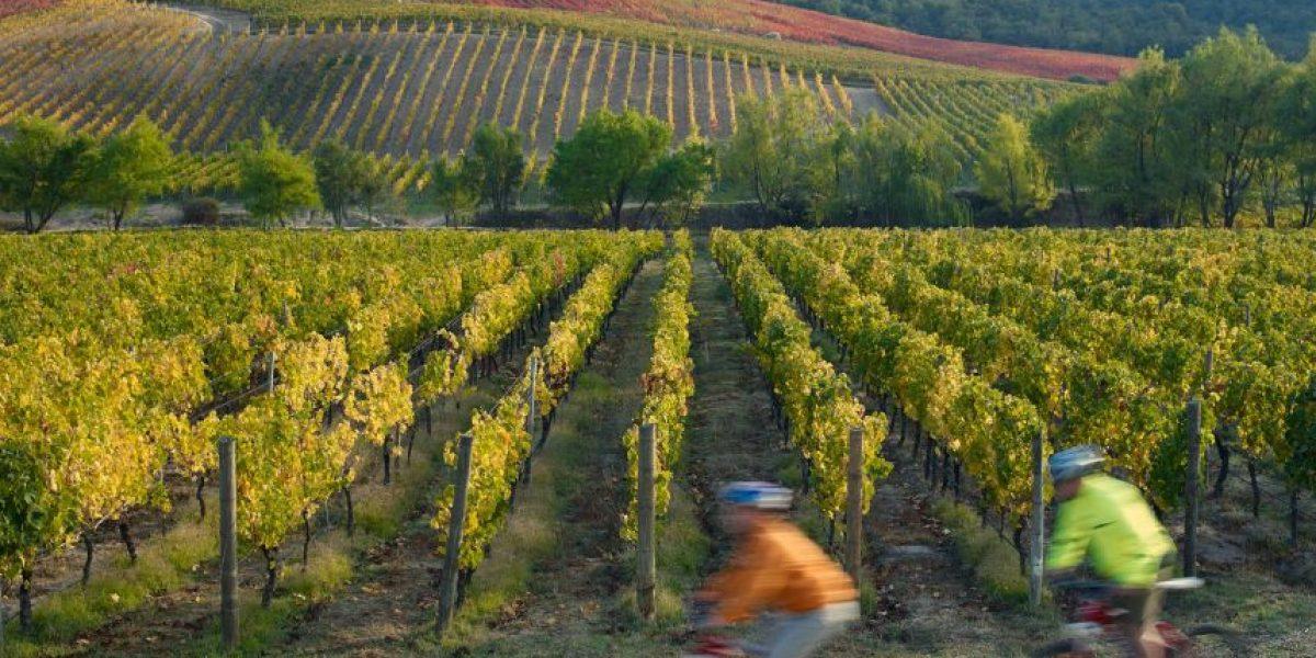 Valle de Colchagua entre las 10 mejores rutas pedaleables del mundo