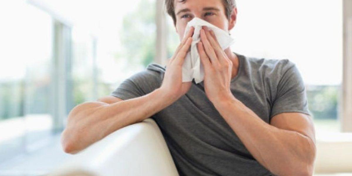 Sigue estos 6 consejos para prevenir las alergias dentro del hogar