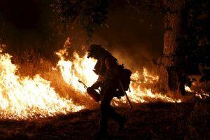 Más de 20 mil hectáreas se han quemado. Foto:Getty Images. Imagen Por: