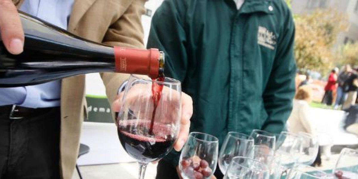 Terremoto 8.4: primer catastro del mundo vitivinícola