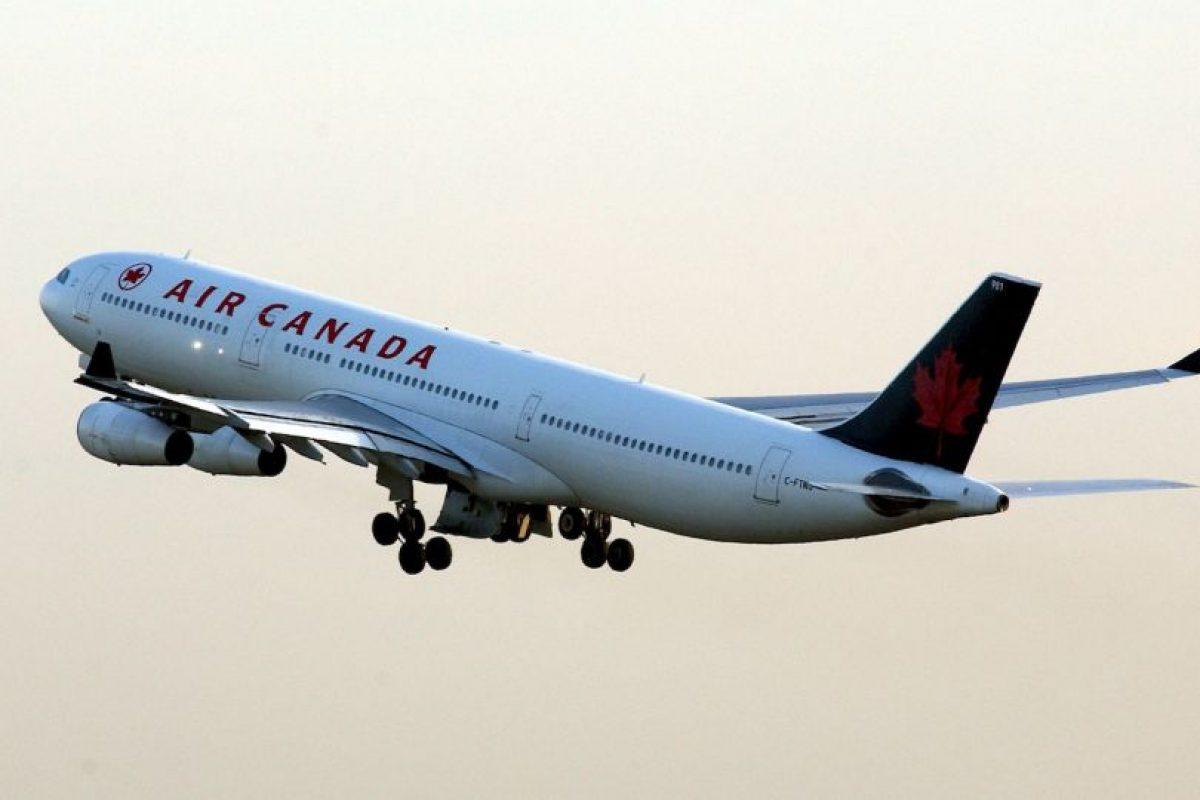 German Kontorovich, su dueño, se reencontró con el en Toronto, luego que fuera puesto en otro vuelo por su seguridad Foto:Getty Images. Imagen Por: