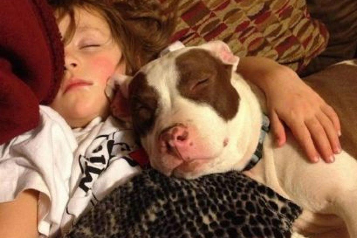 ¡A dormir! Foto:Pinterest. Imagen Por: